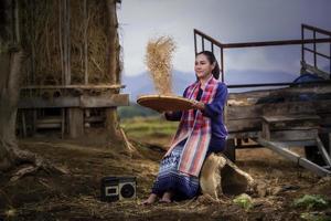 femmina tailandese nel campo di riso e cottage, attività di stile di vita del coltivatore di concetto foto