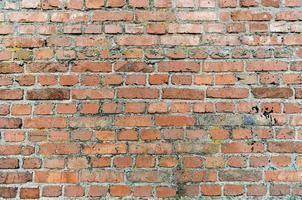 vecchio muro di mattoni da vicino foto