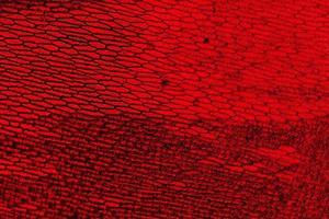 epidermide di cipolla con grandi cellule pigmentate adatto come sfondo astratto foto