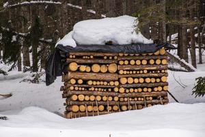 catasta di legna ricoperta di neve foto