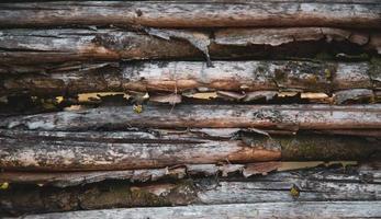 vecchia staccionata in legno fatta di rami degli alberi foto