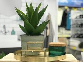 cosmetici per la cura della pelle a base di erbe e concetto di bellezza con la pianta foto