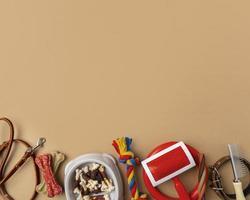 accessori per animali ancora il concetto di vita con vari oggetti e dolcetti per la toelettatura foto
