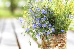 margherite fiori selvatici cottagecore bouquet bloom foto