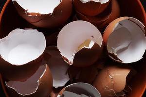 fotografia di gusci d'uovo vuoti in una ciotola per l'illustrazione di cibo foto