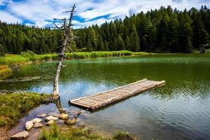 pontile in legno e albero morto sul lago di tret in fondo foto