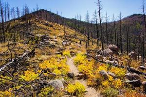 percorso sul parco chautauqua a boulder, colorado foto