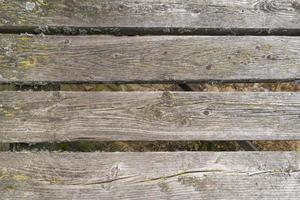 vecchie tavole di legno marce ricoperte di muschio foto