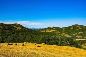 campi gialli e castello foto