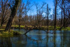 Rive del fiume Brenta a Piazzola sul Brenta, Padova, Italia foto