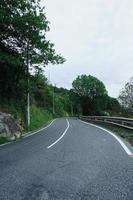 strada con alberi verdi in montagna foto