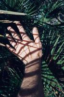 mano che gesticola nell'ombra foto