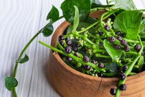 basella alba foglie vegetali per la salute foto