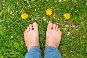 piedi femminili sull'erba verde tra i denti di leone foto