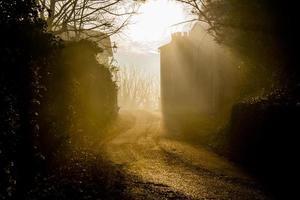 strada con foschia foto