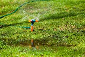 giardino irrigazione irrigazione erba foto