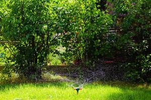 irrigatore rotante da giardino irrigazione erba foto