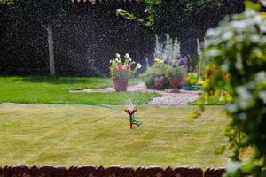 giardino irrigatore irrigazione erba e fiori foto
