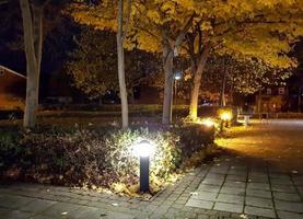 sentiero con la luce foto