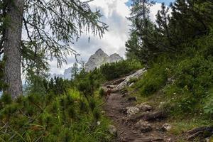 sentiero escursionistico nelle dolomiti foto