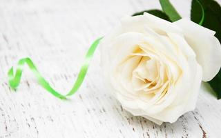 rosa bianca su un vecchio tavolo di legno foto