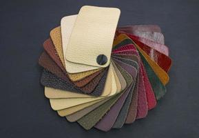 catalogo dei fan con campioni di pelle colorata colored foto
