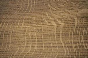 carta da parati con raggi radiali di quercia struttura in legno foto