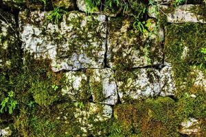muro di pietra muschioso foto