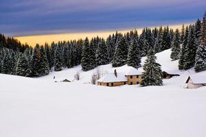 capanna e paesaggio di pini innevati foto