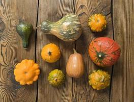 varietà di zucche su uno sfondo di legno. concetto di raccolto piatto disteso. foto