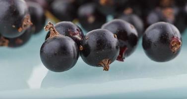 ribes nero, frutti di bosco dal sano bio giardino d'estate gusto frutti di bosco foto