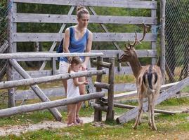 giovane famiglia che trascorre del tempo di qualità insieme ai cervi che si nutrono nel parco selvaggio foto
