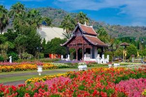 giardino fiorito parco reale ratchaphruek chiang mai thailandia foto