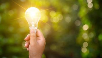 lampadine che brillano sull'erba verde, energia rinnovabile e concetti di conservazione della natura foto
