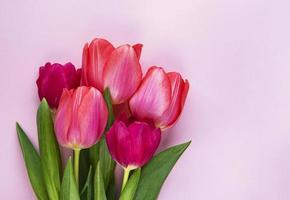 bellissimo bouquet di tulipani foto
