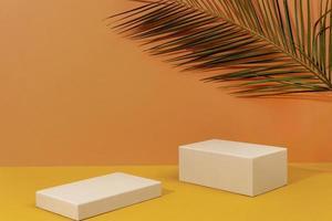 il palcoscenico minimalista dell'arrangiamento creativo foto