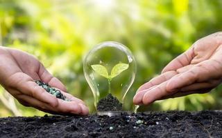 le mani delle persone stanno aiutando a fertilizzare e innaffiare i bulbi che crescono in energia, idee, risorse naturali e ambiente. foto