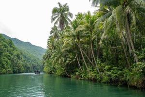 la crociera sul fiume sull'isola di bohol nelle filippine foto