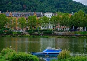 Due anatre stanno su una barca sul fiume Neckar a Heidelberg, Germania foto