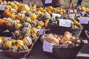 mini zucche decorative e zucche in cestini sul supporto del mercato verde foto