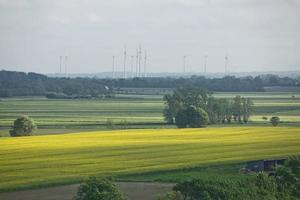 bellissimo paesaggio di campagna vicino a Kiel, Schleswig Holstein, Germania foto