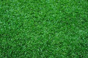 sfondo di erba verde, campo da calcio foto
