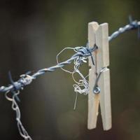 molletta di legno sul recinto di filo spinato foto