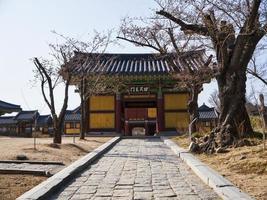 bellissimo parco nel tempio naksansa, corea del sud foto