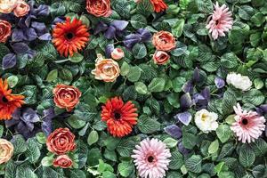 sfondo di primavera con crisantemi artificiali rossi e rosa e rose peonia foto