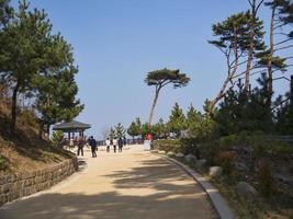 persone al tempio naksansa, corea del sud foto