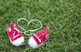 graziose scarpe di tela rosse piccole sull'erba foto