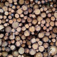 sfondo astratto strutturato in legno foto