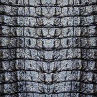 immagine del primo piano dello sfondo della trama della pelle di coccodrillo foto