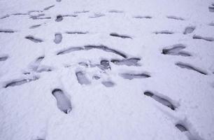 impronte sulla neve foto